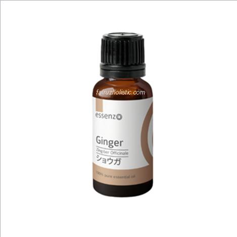 Ginger Essential Oil 10 ml